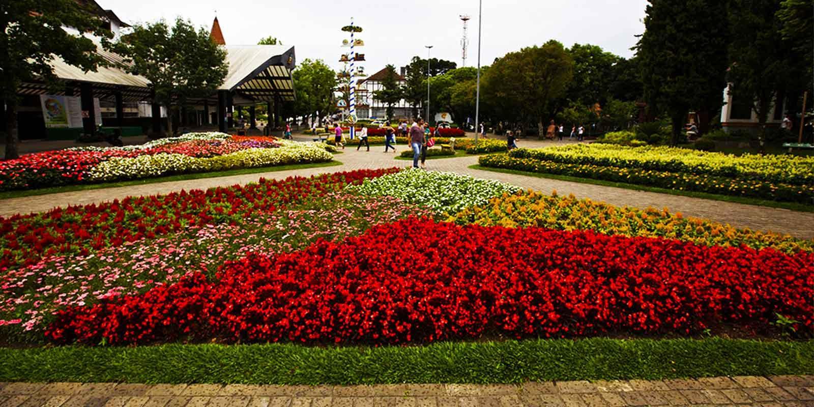 20170731142849-flores.jpg